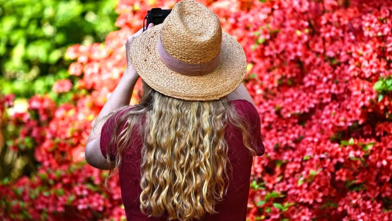 Kann eine Haarmaske tatsächlich unser Haar wiederbeleben?